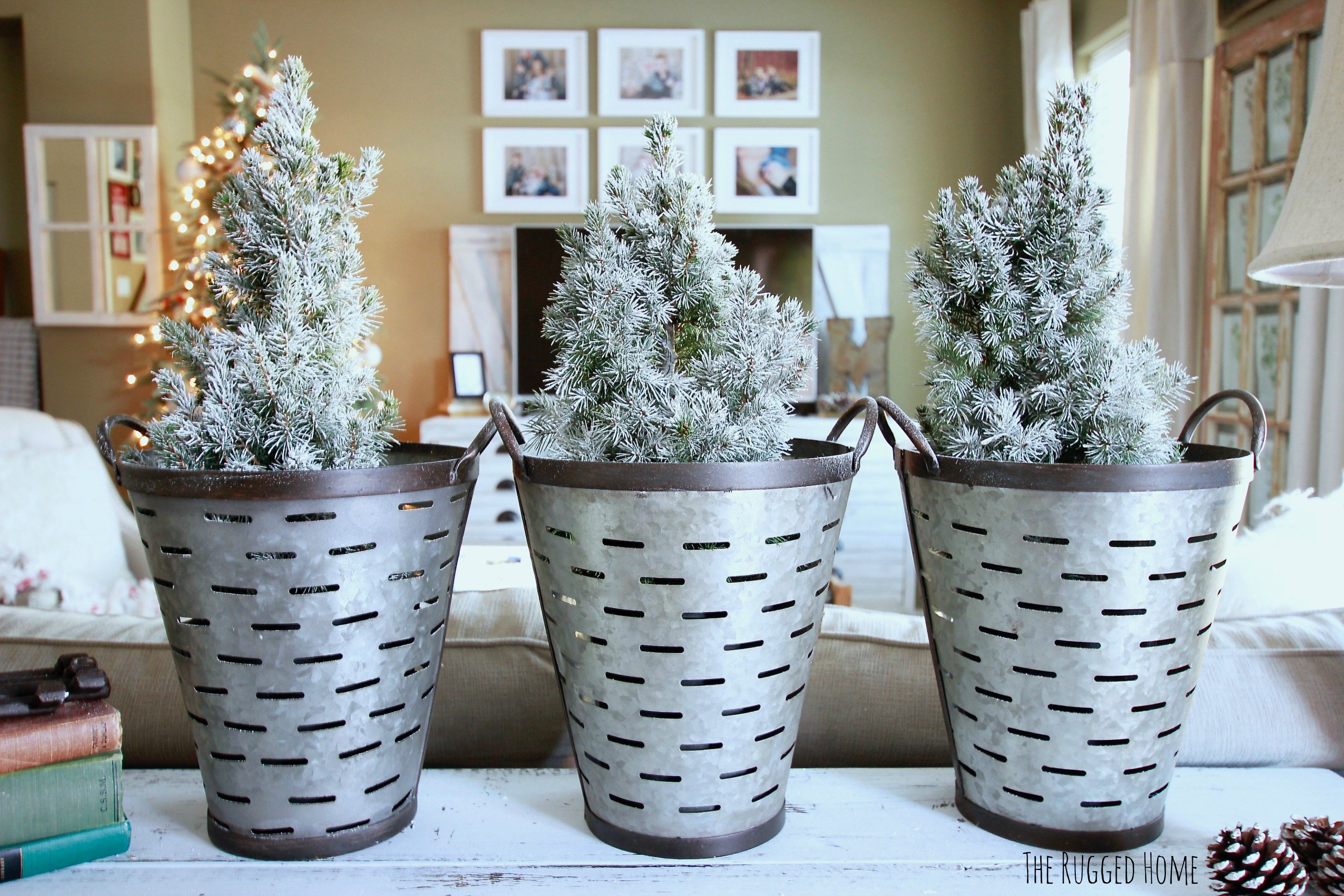 Charlie Brown Christmas Trees in Olive Buckets